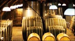 Weingut Wittman Cellars